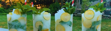 Coconut Key Lime Mojitos